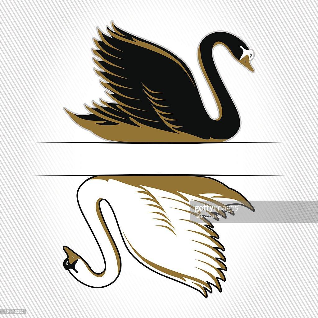 double swan