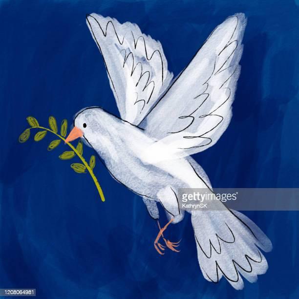 ilustraciones, imágenes clip art, dibujos animados e iconos de stock de dove holding olive branch - catolicismo
