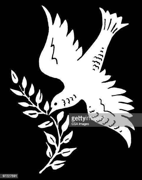 dove with olive branch - dove bird stock illustrations