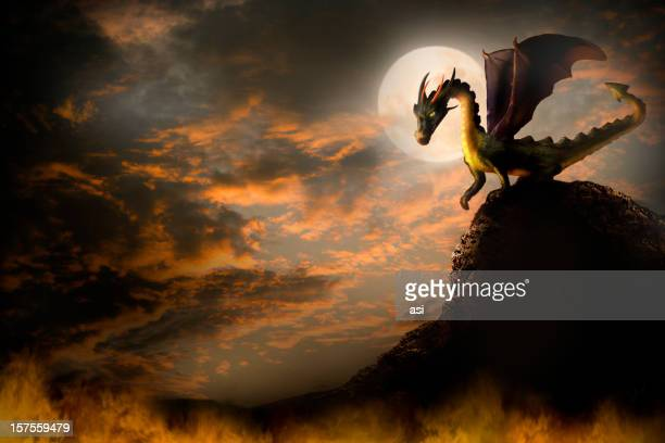 dragon on a rock. - dragon stock illustrations