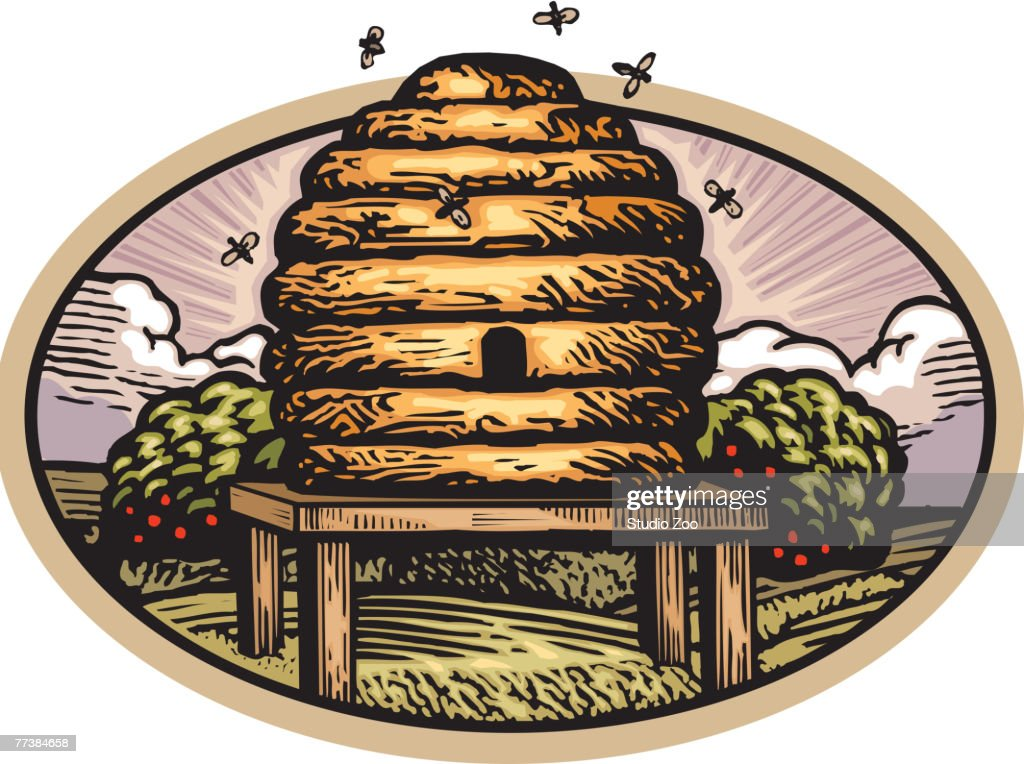 Drawing Of A Bee Hive Vector Art