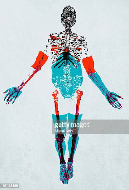 a drawing of a human figure with details of muscle, tendons and bones made up of electric shapes and - anatomical model stock illustrations, clip art, cartoons, & icons