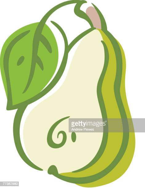 drawing of a pear, cut side down - webbed foot stock illustrations, clip art, cartoons, & icons