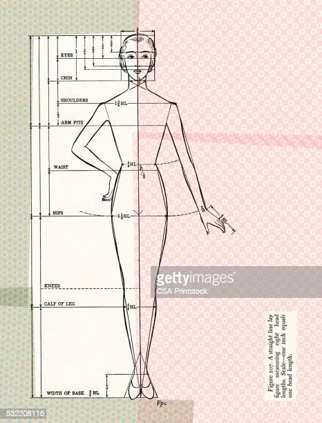 dressmaking form - mannequin stock illustrations, clip art, cartoons, & icons