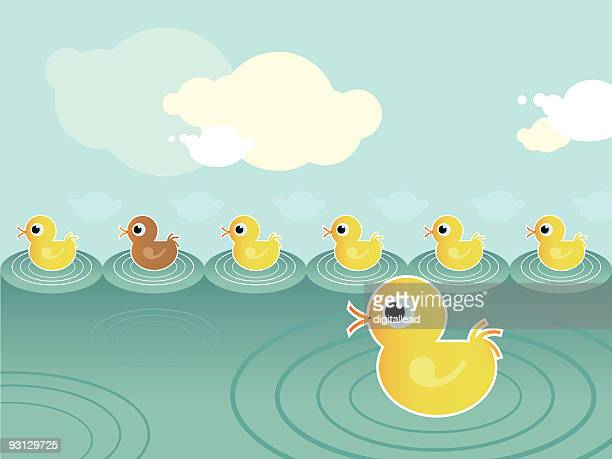 duck family in a pond