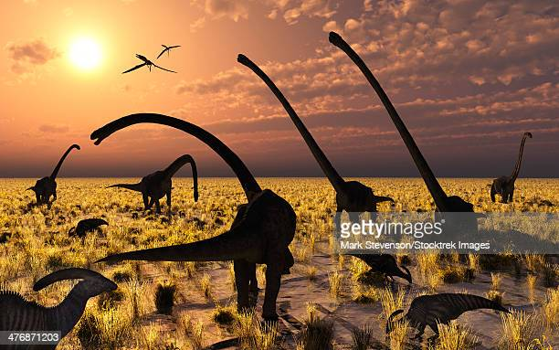 Duckbill dinosaurs and large sauropods share a feeding ground at sunset.
