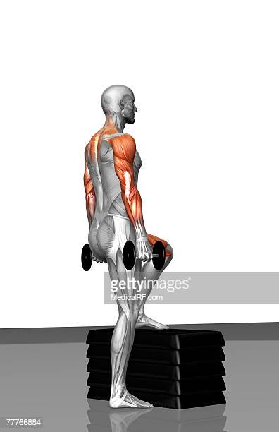 dumbbell step-up exercise (part 2 of 2) - step aerobics stock illustrations, clip art, cartoons, & icons