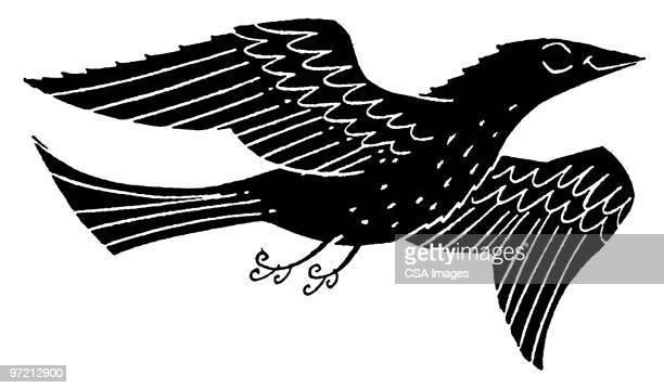 eagle - gliedmaßen körperteile stock-grafiken, -clipart, -cartoons und -symbole