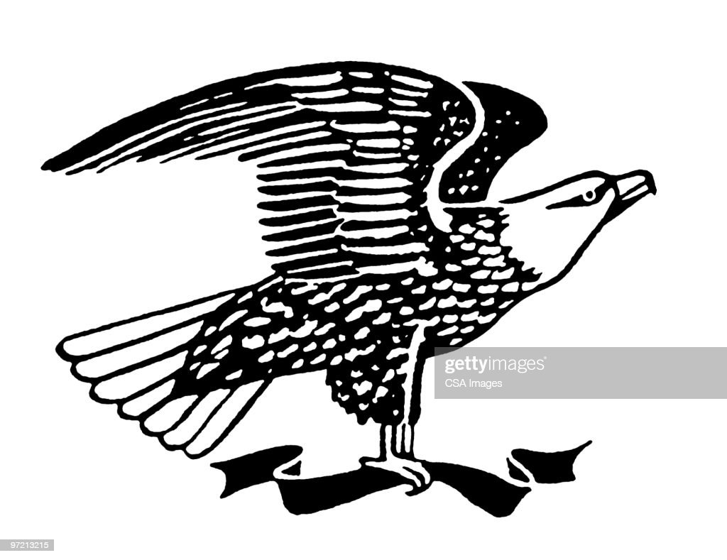Eagle : Stock Illustration