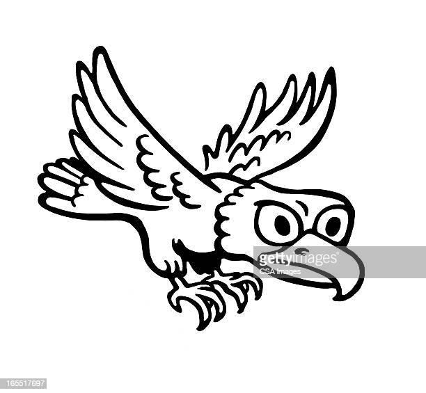 Bird Beaks Premium Stock Illustrations Getty Images
