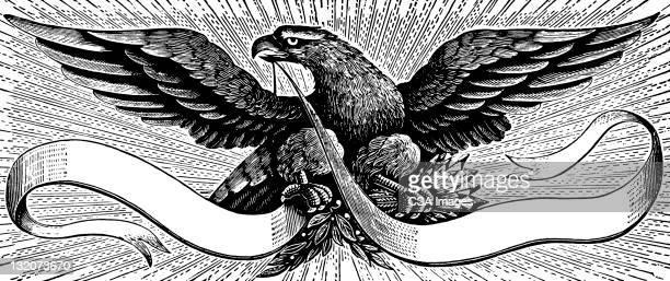 illustrations, cliparts, dessins animés et icônes de aigle avec bannière - aigle