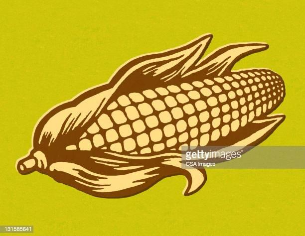 ear of corn - corn stock illustrations, clip art, cartoons, & icons
