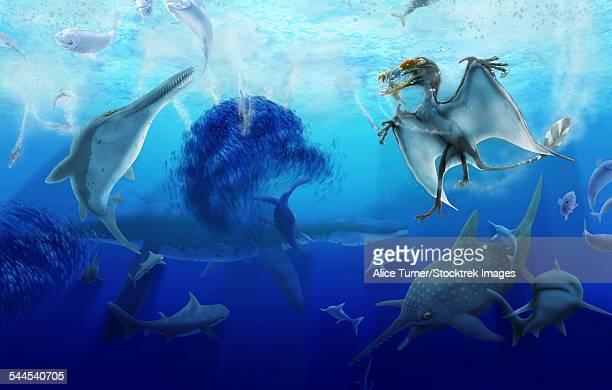 ilustraciones, imágenes clip art, dibujos animados e iconos de stock de early jurassic european pelagic scene with various extinct animals. - plesiosaurio