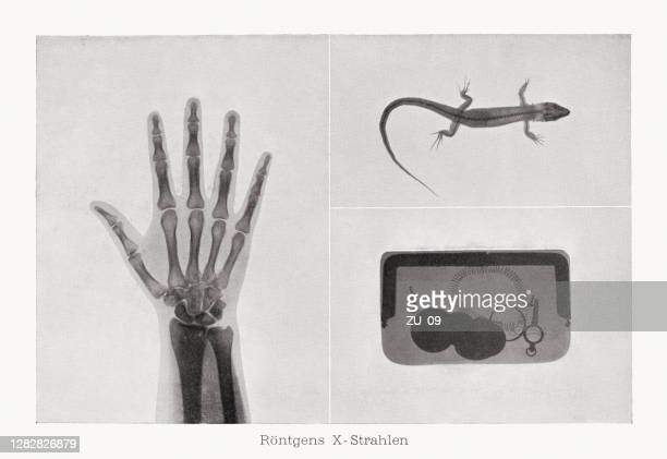 early x-rays, photograph halftone print, published in 1899 - scientific imaging technique stock illustrations