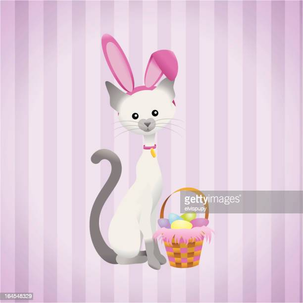 easter kitty - easter bunny costume stock illustrations, clip art, cartoons, & icons