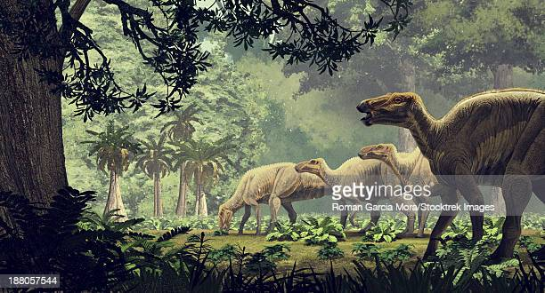 edmontosaurus annectens, a saurolophine hadrosaur from the maastrichtian (late cretaceous) of north america. - hadrosaurid stock illustrations, clip art, cartoons, & icons