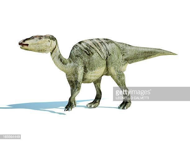 edmontosaurus dinosaur, artwork - hadrosaurid stock illustrations, clip art, cartoons, & icons