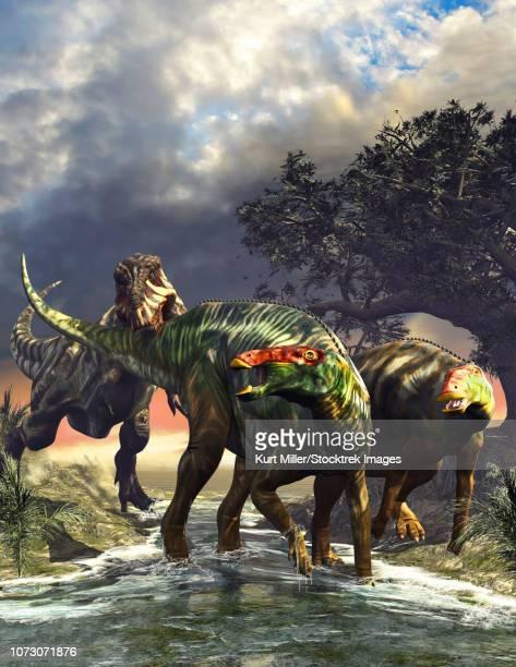Edmontosaurus dinosaurs fighting off a T-Rex.