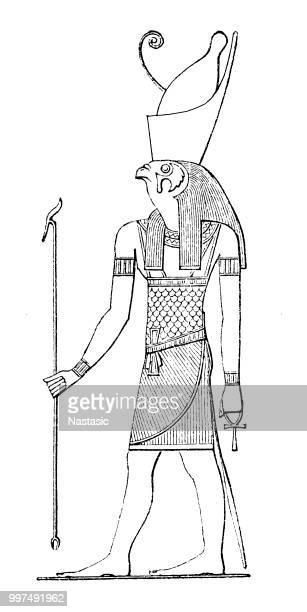 egyptian god horus - north african ethnicity stock illustrations, clip art, cartoons, & icons