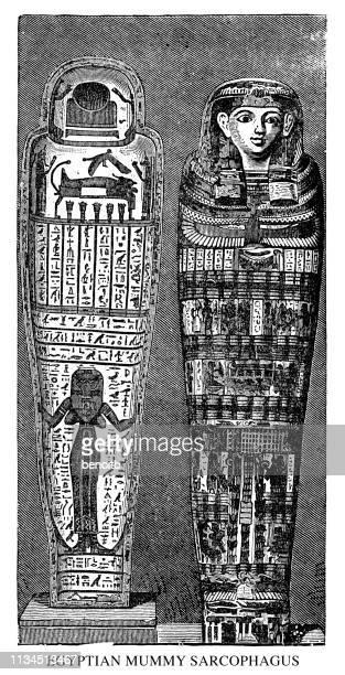 illustrations, cliparts, dessins animés et icônes de sarcophage de momie égyptienne - hiéroglyphe