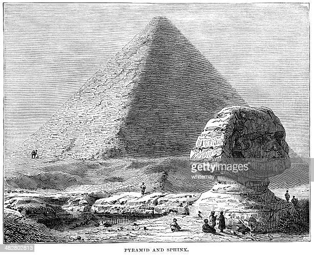 egyptian pyramid and the sphinx (1882 engraving) - the sphinx stock illustrations, clip art, cartoons, & icons