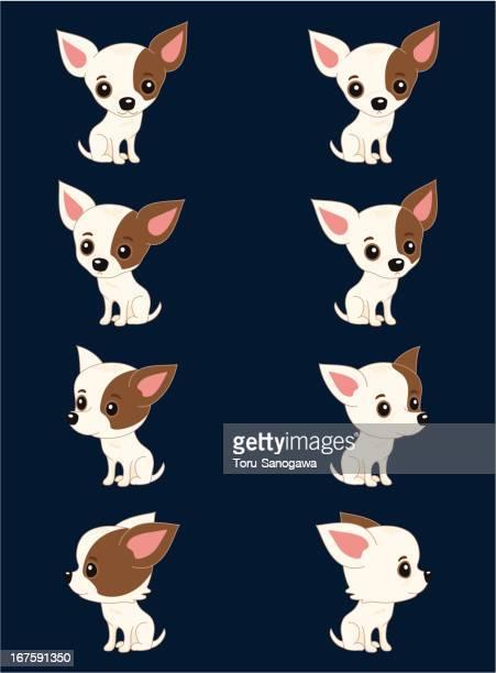 Arte Vectorial Y Gráficos De Chihuahua