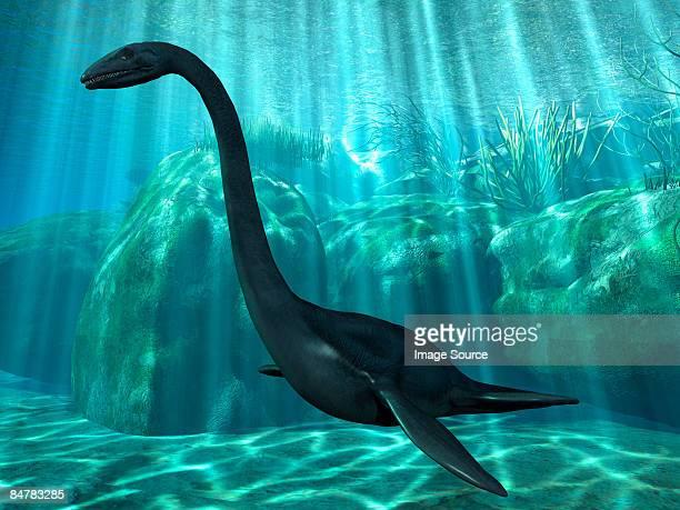 elasmosaurus - loch ness monster stock illustrations