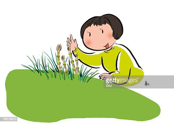 Elementary Age Girl Found Horsetail in Nature