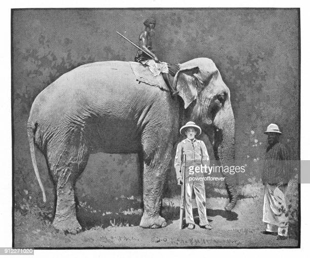 elephant and rider in calcutta, india - british era - kolkata stock illustrations