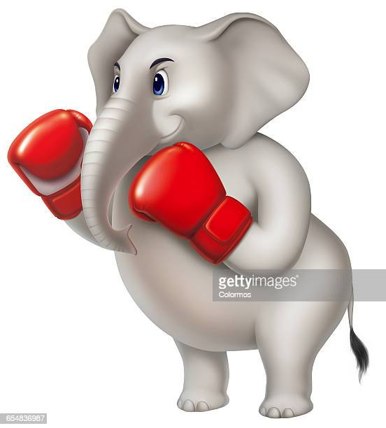 illustrations, cliparts, dessins animés et icônes de elephant holding up red boxing gloves - gant de boxe