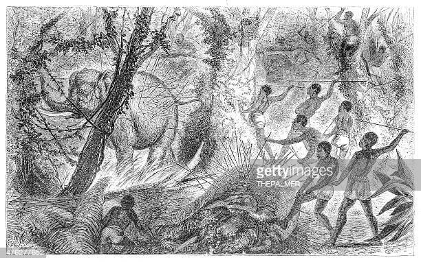 Elephant hunting engraving