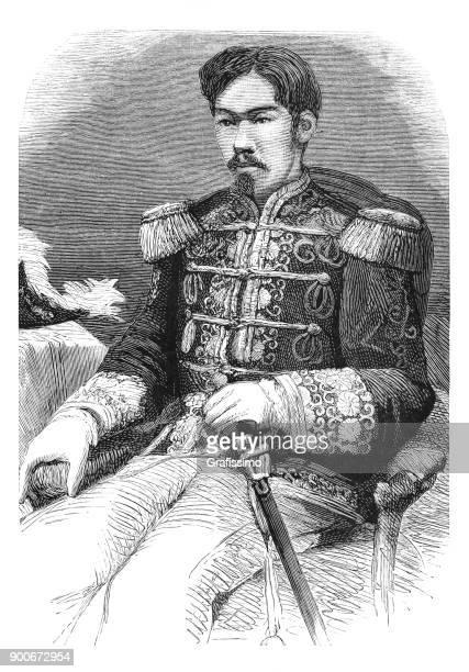 emperor mutsuhito mikado meiji japan portrait 1875 - fine art portrait stock illustrations, clip art, cartoons, & icons