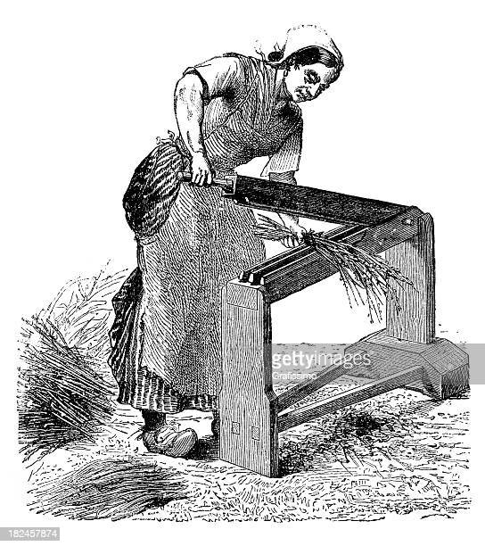 engarving woman working with scutcher on flax - hemp stock illustrations, clip art, cartoons, & icons