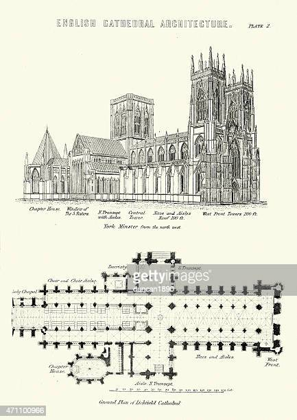English Cathedral Architecture - York Minsiter and Lichfield Cat