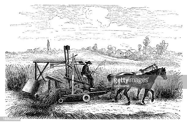 engraving farmer reaping wheat with antique machine and horses - 18th century stock illustrations