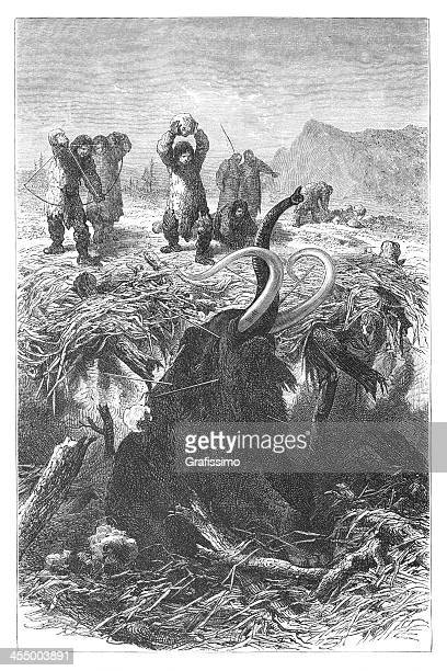 engraving hunters killing mammoth at ice age - images of mammoth stock illustrations