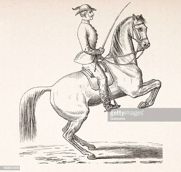engraving of dressage rider on horse from 1870 - paddock stock illustrations, clip art, cartoons, & icons