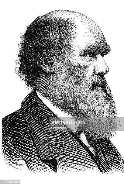 gravieren der wissenschaftler charles darwin aus dem jahre 1870 - darwin stock-grafiken, -clipart, -cartoons und -symbole