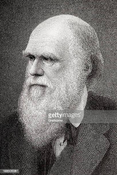 gravieren der wissenschaftler charles darwin aus 1882 - darwin stock-grafiken, -clipart, -cartoons und -symbole