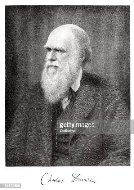 gravieren der wissenschaftler charles darwin aus 1882 mit charakteristischen - darwin stock-grafiken, -clipart, -cartoons und -symbole