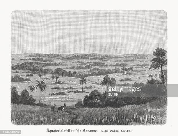 Equatorial African savannah, wood engraving, published in 1897