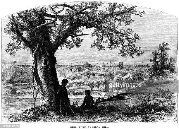 erie from federal hill (victorian engraving) - lake erie stock illustrations, clip art, cartoons, & icons