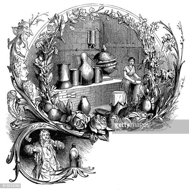 essential oils and perfumery - distillation stock illustrations, clip art, cartoons, & icons