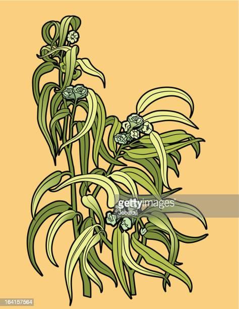 ユーカリの花 - ユーカリの葉点のイラスト素材/クリップアート素材/マンガ素材/アイコン素材