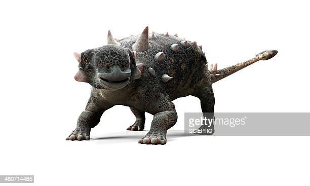 euoplocephalus dinosaur, artwork - cretaceous stock illustrations