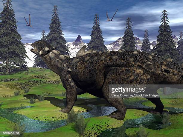 euoplocephalus dinosaur walking in the mountain amongst fir trees and onychyopsis plants. - scute stock illustrations, clip art, cartoons, & icons