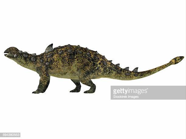 euoplocephalus is an armored dinosaur that lived during the cretaceous period of canada. - scute stock illustrations, clip art, cartoons, & icons