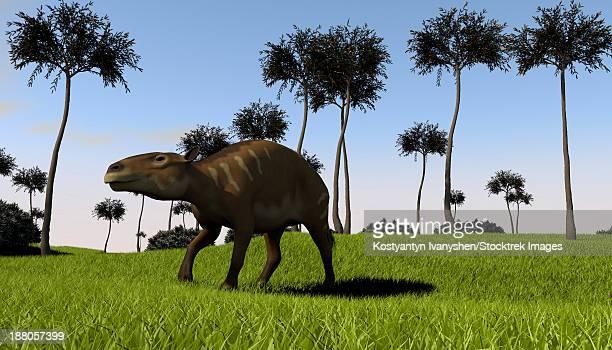 ilustraciones, imágenes clip art, dibujos animados e iconos de stock de a eurohippus walking across a grassy field. - paleozoología