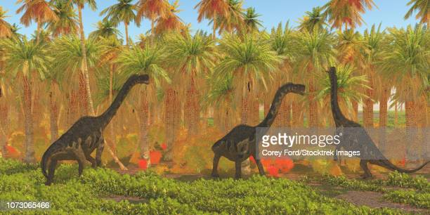 Europasaurus dinosaurs grazing through a jungle habitat.
