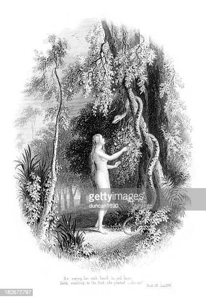 eve and the serpent - adam biblical figure stock illustrations, clip art, cartoons, & icons